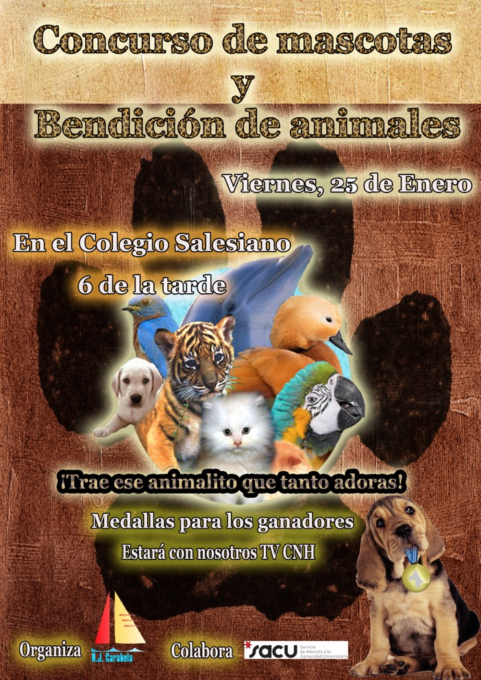 cartel bendición animales